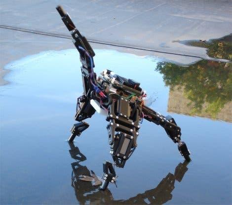 Vierarmiger Seestern – Der Roboter von J. Bongard