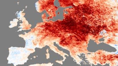 Je röter, desto wärmer: Temperaturabweichungen im Dezember
