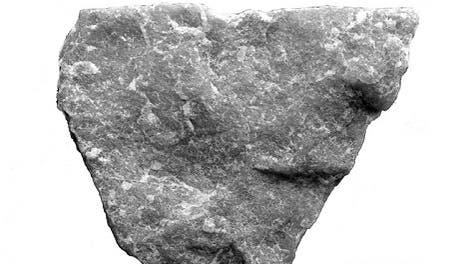 Prähistorisches Schimpansen-Werkzeug
