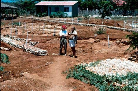 Grabungsstätte La Isabela auf der Insel Hispaniola