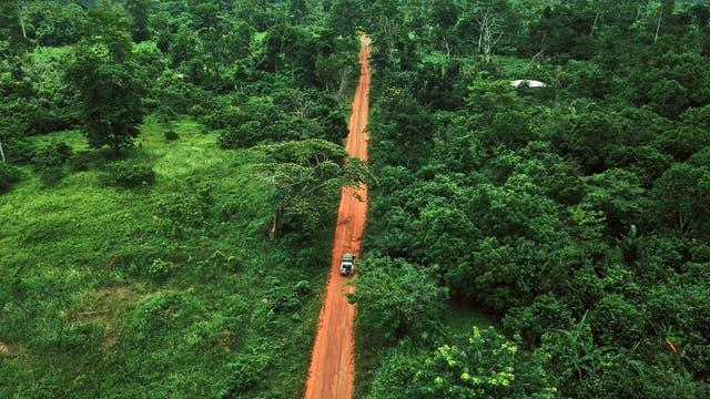Eine Straße führt durch ein Waldgebiet in der Elfenbeinküste