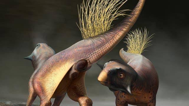 Balzende Psittacosaurus