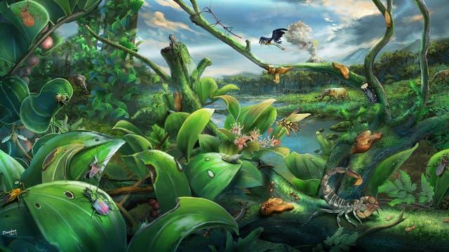 Illustration eines Regenwalds im Miozän