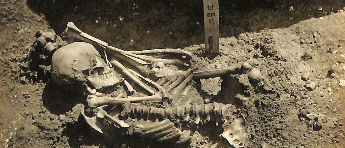Das Skelett Tsukumo 24 während der Ausgrabung.