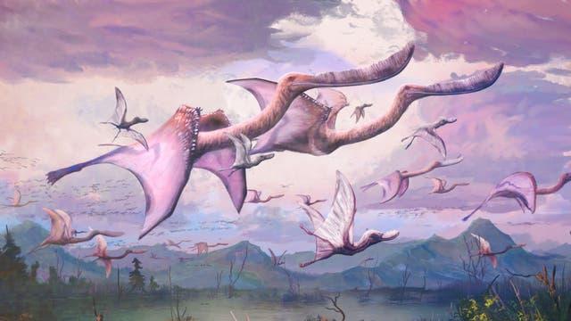 Pterosaurierfamilie beim Flug