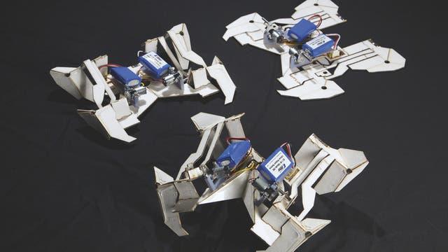 Roboterkäfer