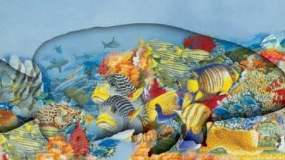 Bunte Fischwelten