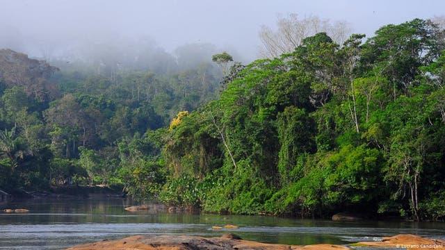 Reisen durch den Amazonas-Regenwald