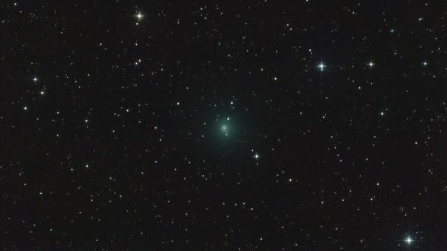 Komet 41P/Tuttle-Giacobini-Kresák (Aufnahme von José J. Chambó)