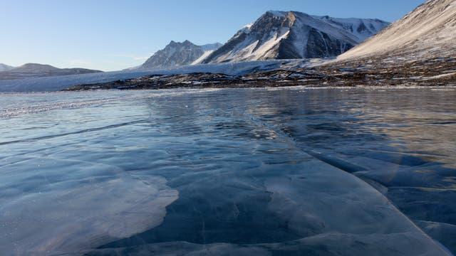 Seen in den antarktischen Trockentälern