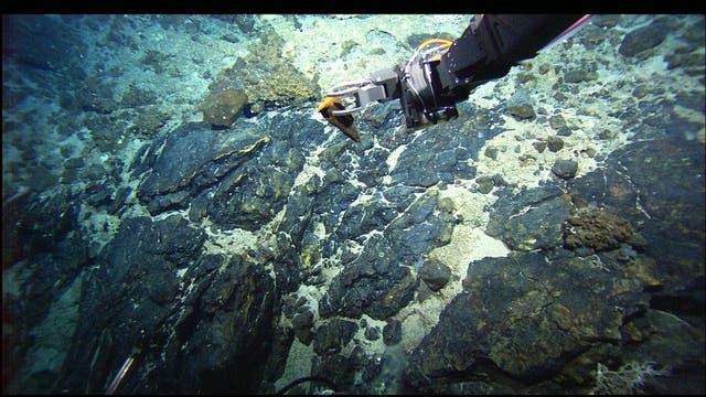 Große Teile des Meeresbodens entlang des atlantischen Rückens sind mit Fels bedeckt