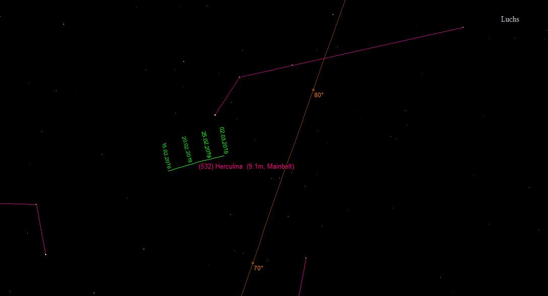 Aufsuchkarte für (532) Herculina im Sternbild Luchs