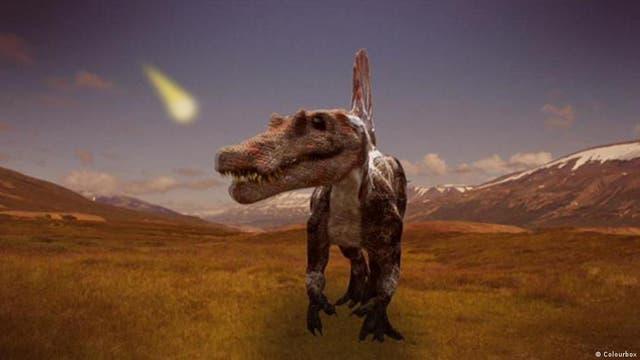 Welche Tiere haben die Dinosaurier überlebt?