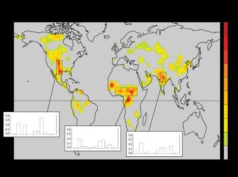 Bodenfeuchte und Niederschlagsgeschehen
