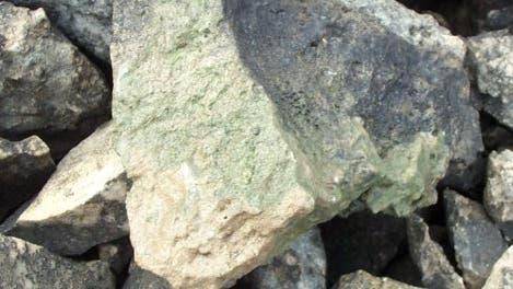Hypolithion auf der Unterseite eines Steins