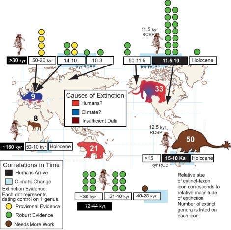 Ausrottung der Makrofauna des Pleistozäns