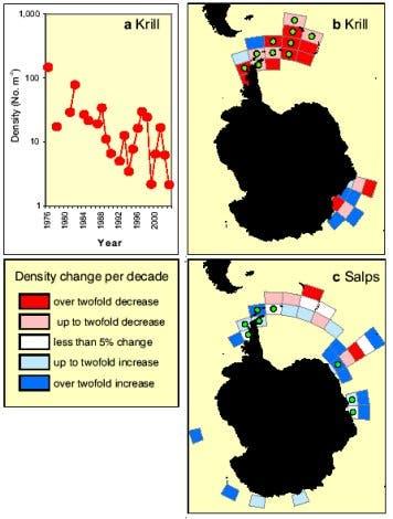 Veränderungen der Krill- und Salpen-Bestände in der Antarktis