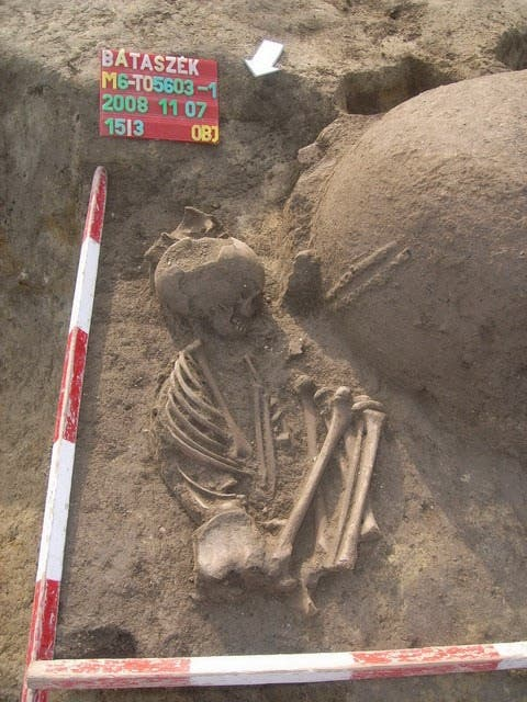 Skelett aus der frühen Jungsteinzeit