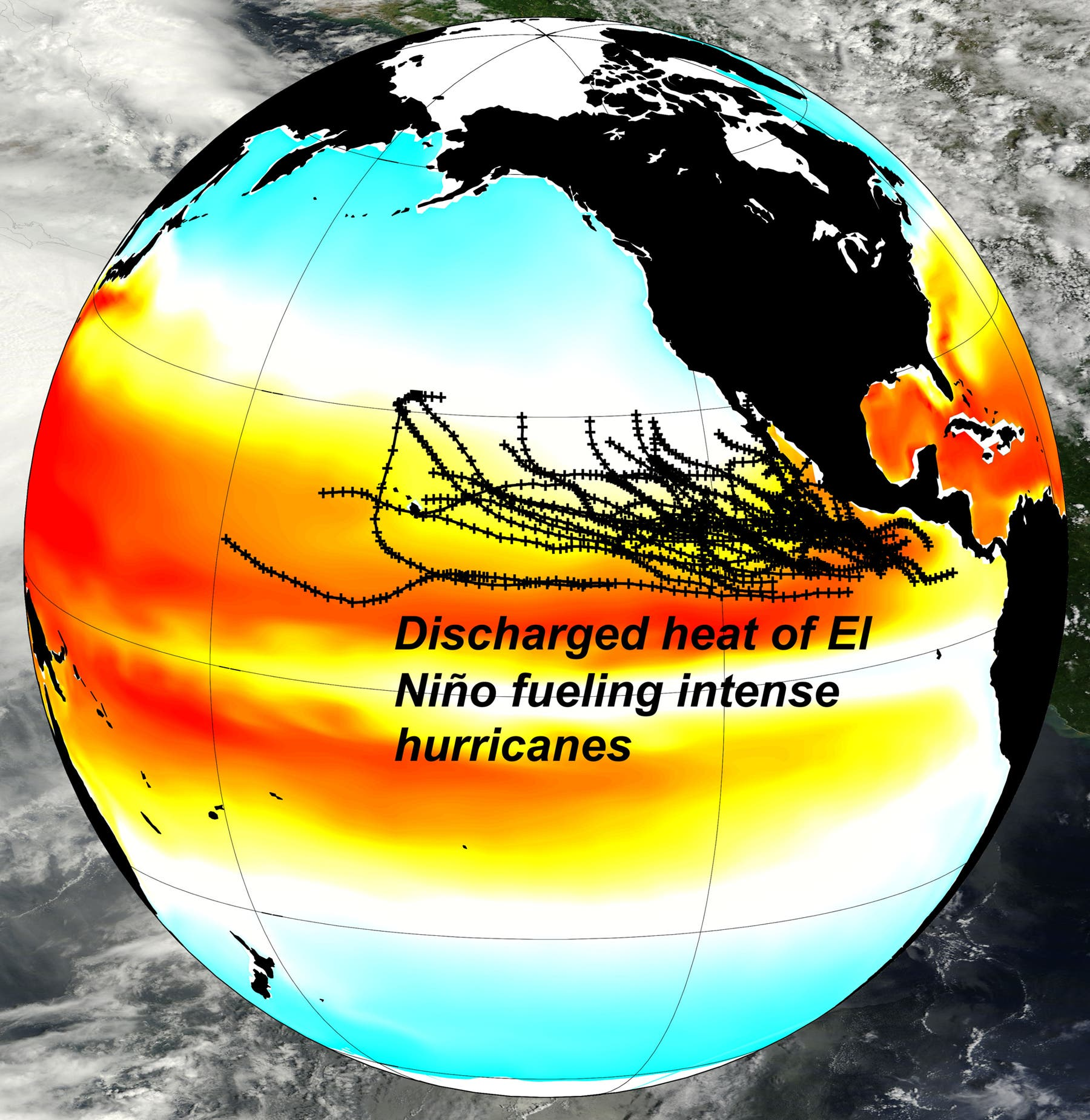 El Niño transferiert Wärme in die hohen Breiten