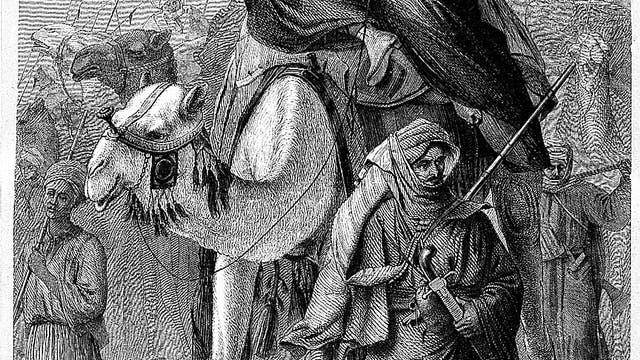 Alexandrine Tinne auf einem Kamel