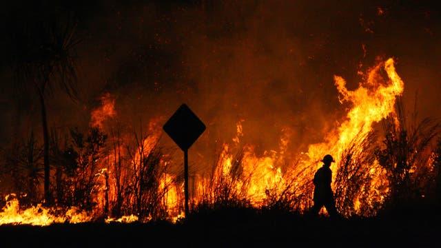 Eine etwa zwei Meter hohe Flammenwand im Dunkeln. Im Vordergrund und Feuerwehrmann und ein ikonisches australisches Verkehrsschild.