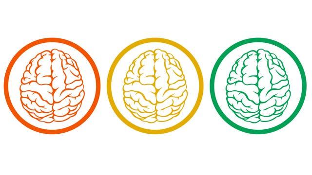 Drei Gehirne, in den Farben rot, gelb und grün, sind jeweils von einem Kreis umschlossen.