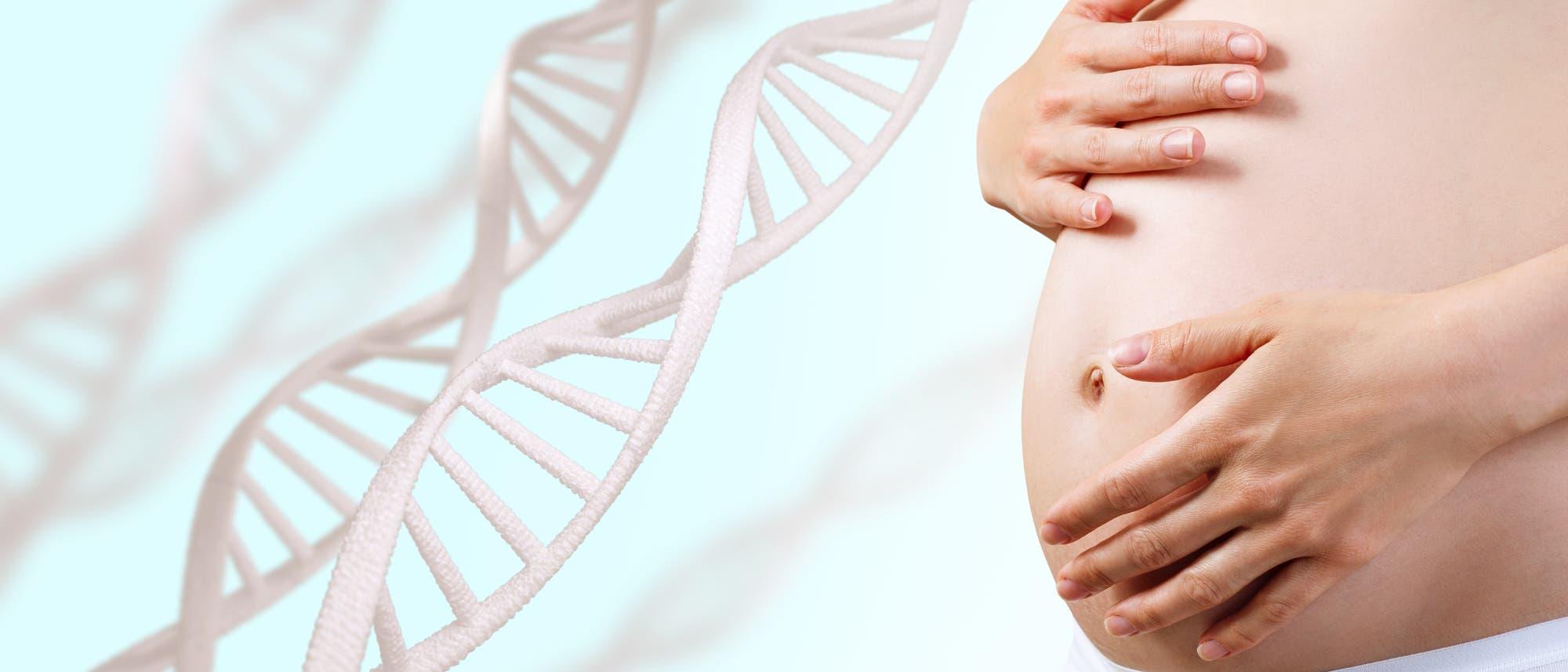 Der Bauch einer Schwangeren neben einigen stilisierten Doppelhelices.