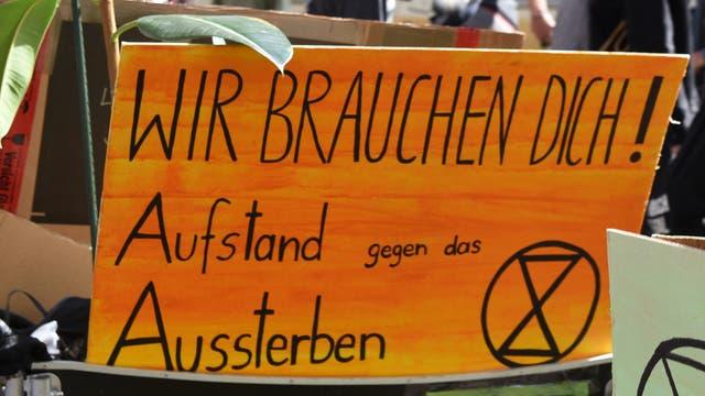 Klimaprotest-Plakat auf einer Extinction-Rebellion-Demo