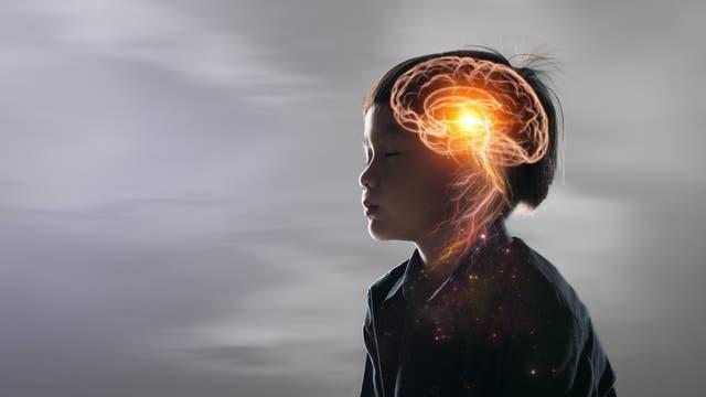 In den Tiefen des Gehirns