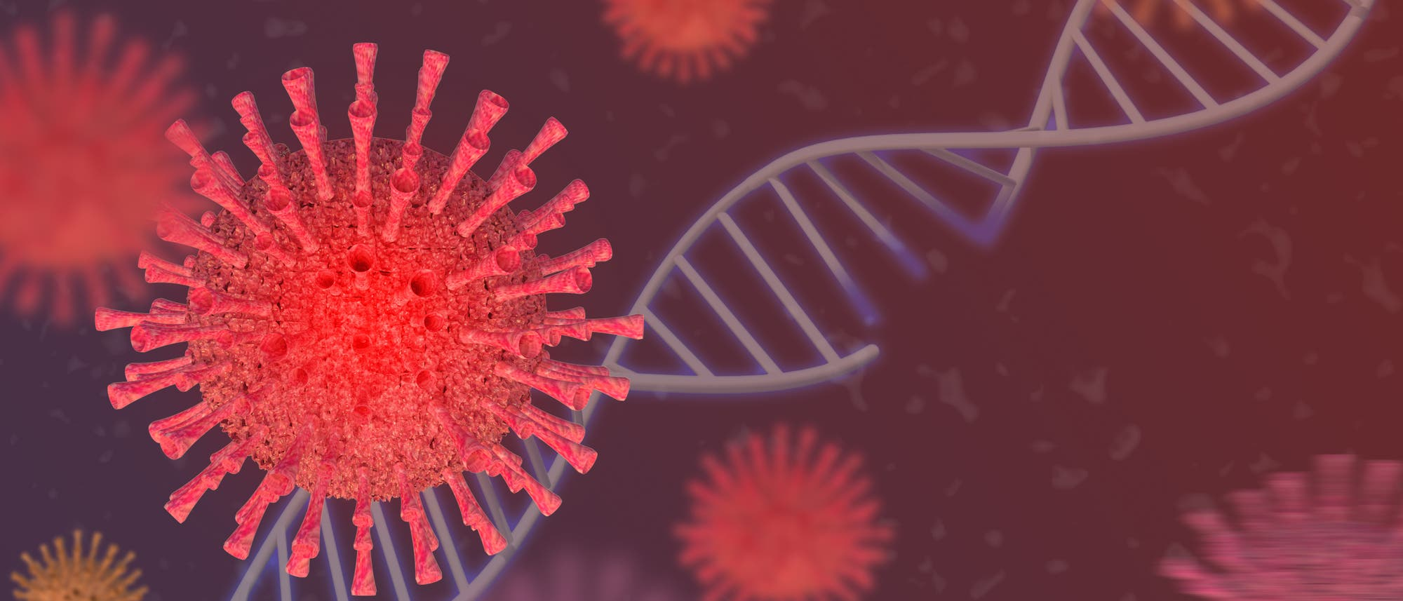 Die Computeranimation zeigt einen Erreger, der dem Coronavirus ähnelt.