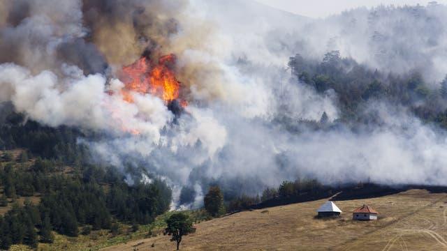 Ein Feuer an einem bewaldeten Hang erzeugt sehr viel Rauch.