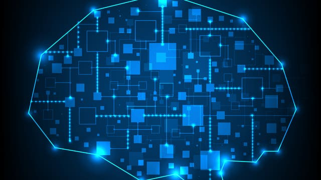 Kooperation in der Hirnforschung