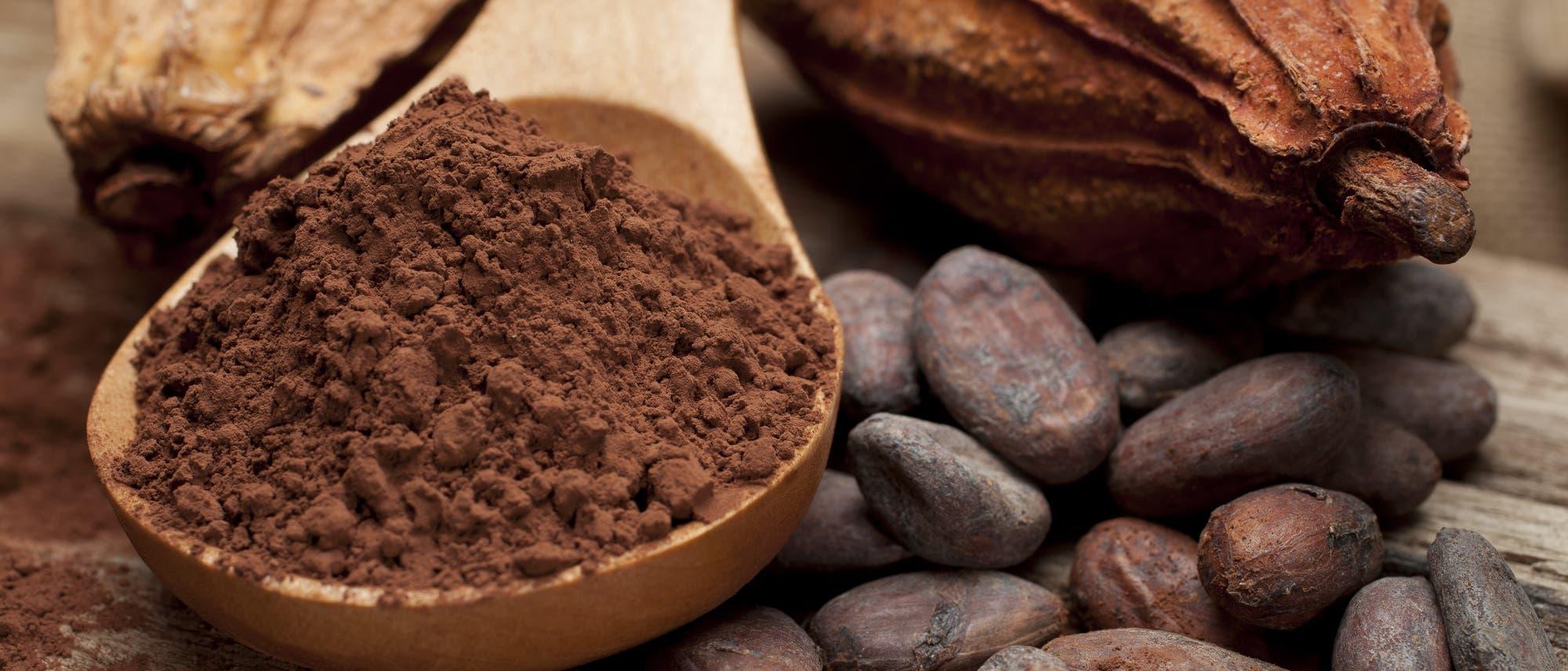 Kakaofrüchte, Kakaobohnen und Kakaopulver