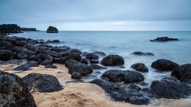 Leblose Lava-Küste