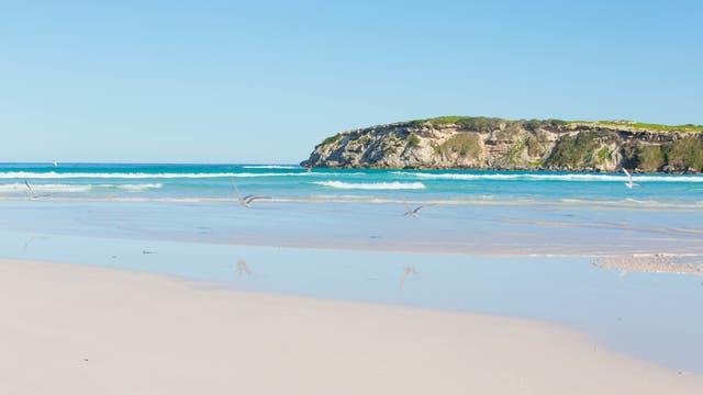 Wedge Island ist ein Naturschutzgebiet etwa hundertvierzig Kilometer nördlich der westaustralischen Hauptstadt Perth. Im Februar Bilder von Australischen Sandstränden raussuchen zu müssen ist übrigens mal so richtig gemein.