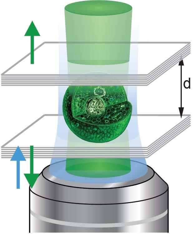 Lebende Zelle als Laser
