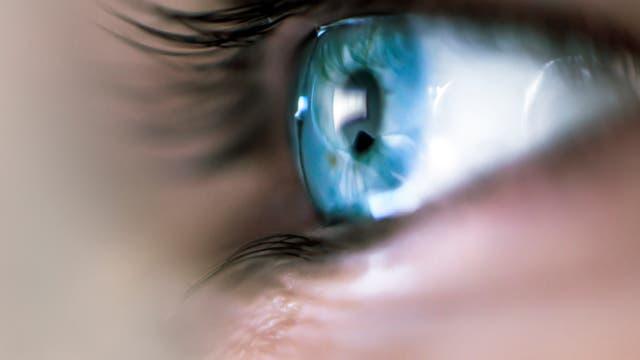 Blick aufs Auge