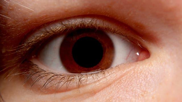 Ein braunes Auge in Nahaufnahme