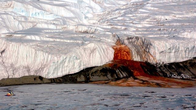 Aus dem Taylor-Gletscher sprudelt rostrotes Wasser
