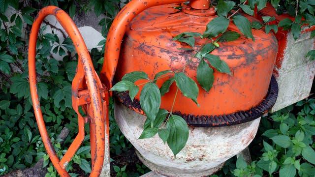 Betonmischmaschine wird von Unkraut überwuchert