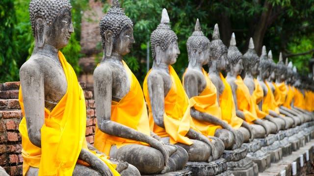 eine Reihe von Buddhastatuen