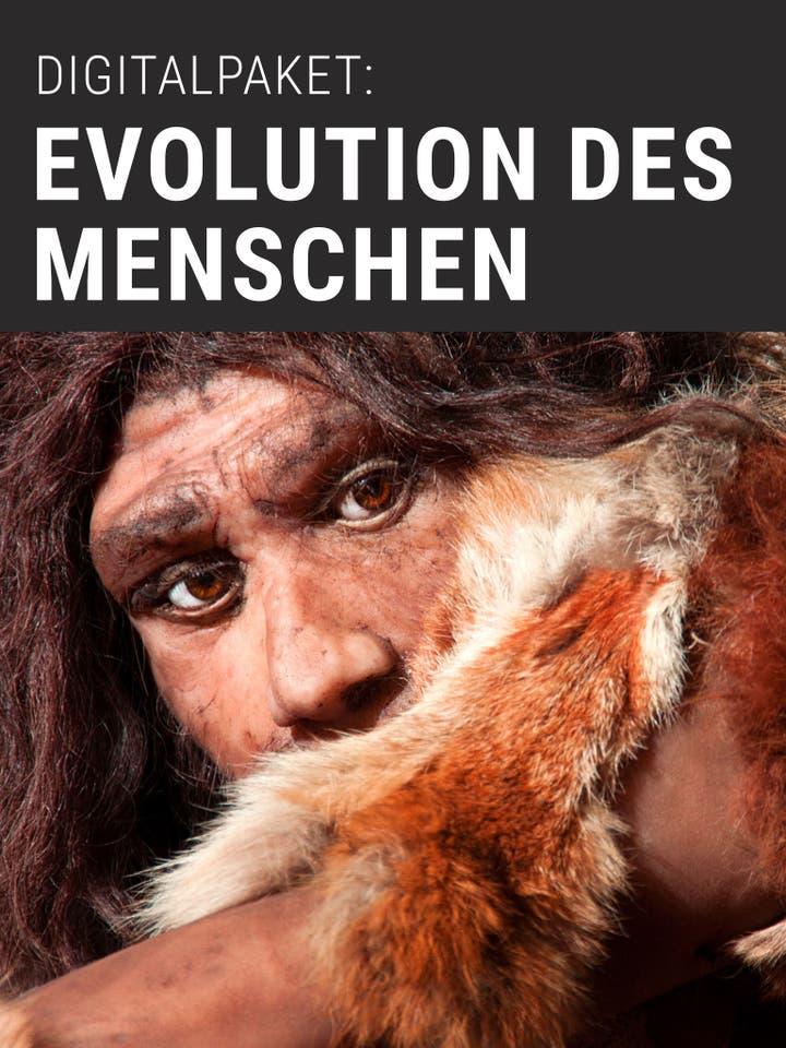 Digitalpaket: Evolution des Menschen Werbebild