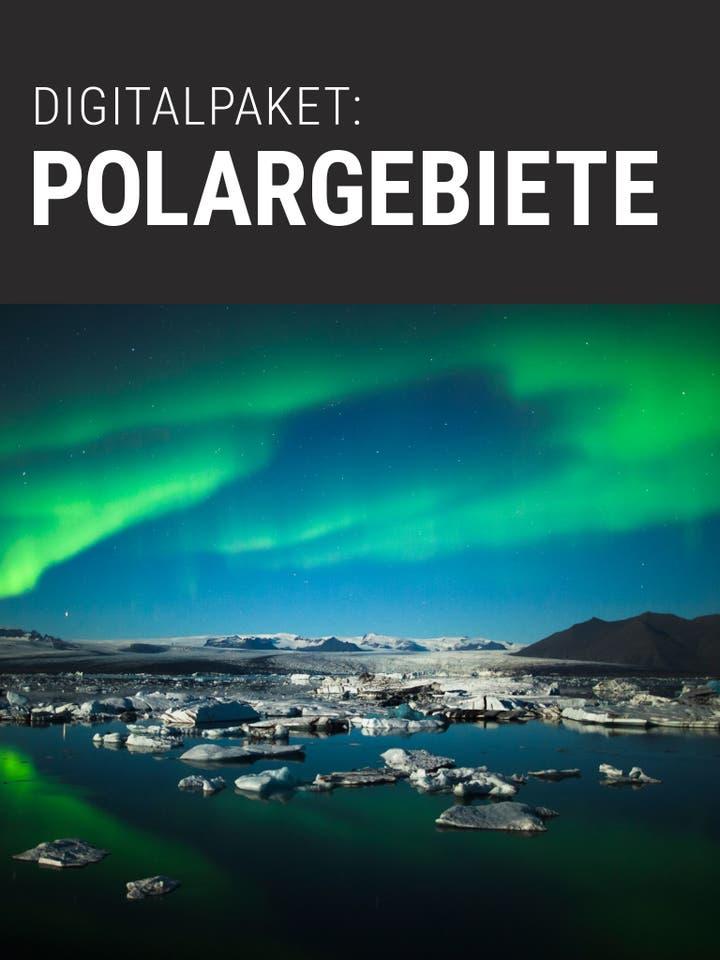 Spektrum.de Digitalpaket: Polargebiete