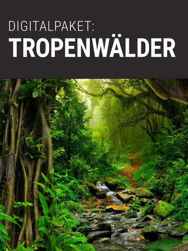 Spektrum.de Digitalpaket: Tropenwälder