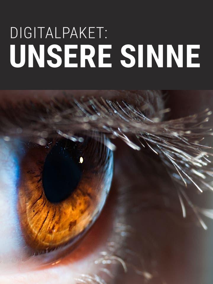 Digitalpaket: Unsere Sinne_Teaserbild