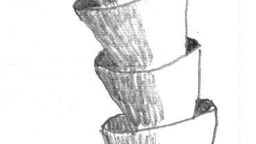 Fossil von Cloudina