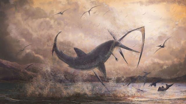 Hai schnappt Pterosaurier