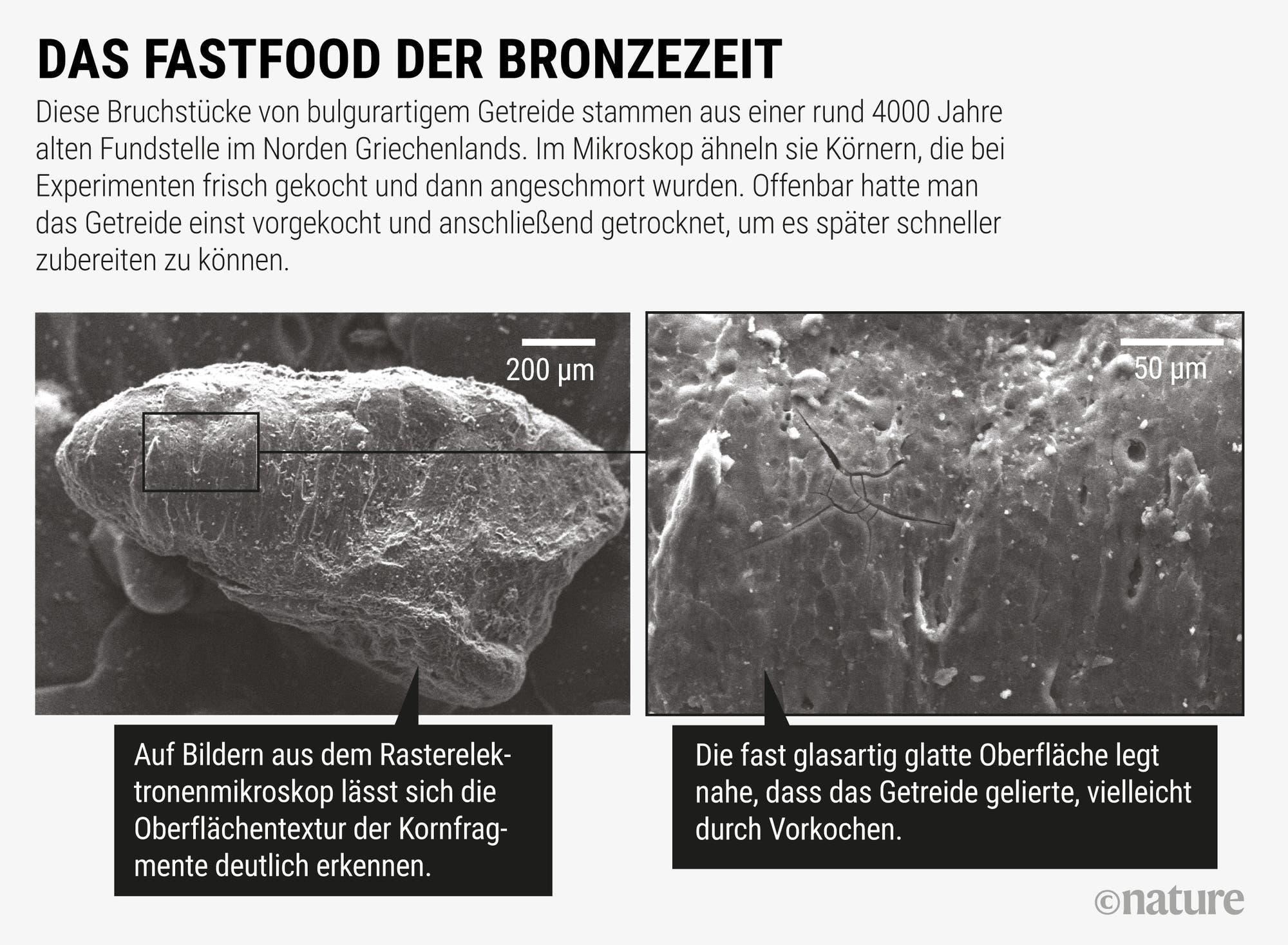 Das Fastfood der Bronzezeit