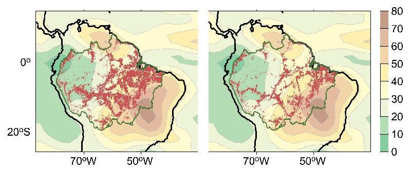 Dürre und Abholzung