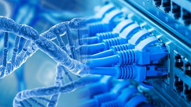 Ethernet-Kabel gehen über in einen stilisierten DNA-Strang